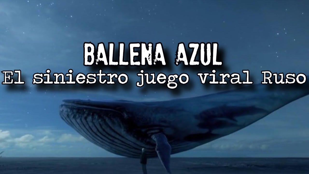 Resultat d'imatges de reto de la ballena azul